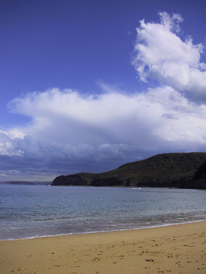 Looking across Maitland Bay to Gerrin Point, Bouddi National Park