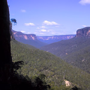 The majestic cliffs of the Grose Valley, from the end of Yileen Canyon, Blue Mountains National Park