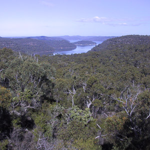The view down to the Hawkesbury River from Mt Pindar, Brisbane Water National Park