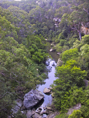 The upper reaches of the Lane Cove River, from De Burghs Bridge, Lane Cove National Park