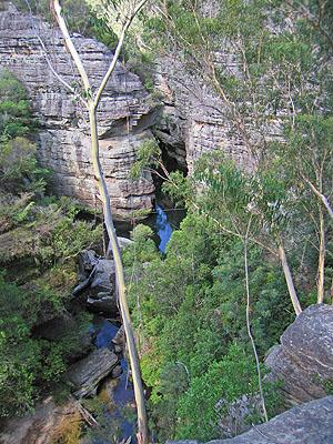 Wollangambe River Bushwalking Nsw